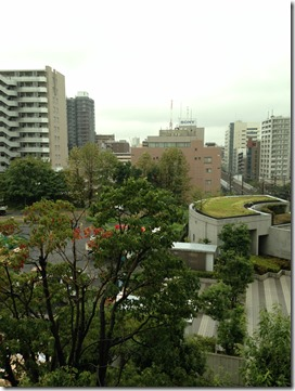 141022雨